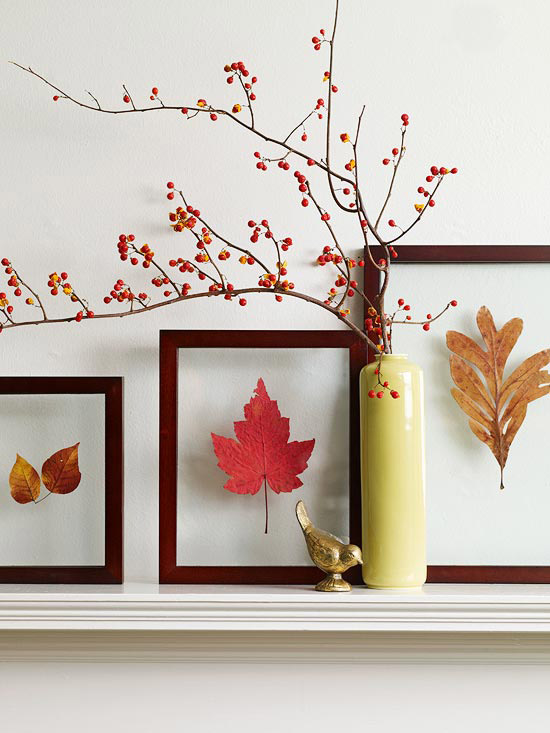 fall leaf pressings encased in glass