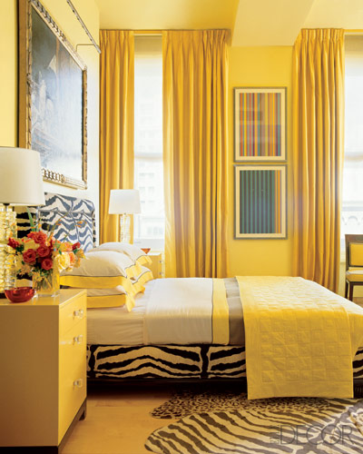 room with with animal prints